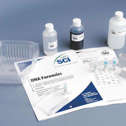 Bild på DNA - Mordgåta
