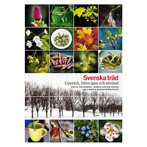 Bild på Svenska träd /Holmberg m.fl.