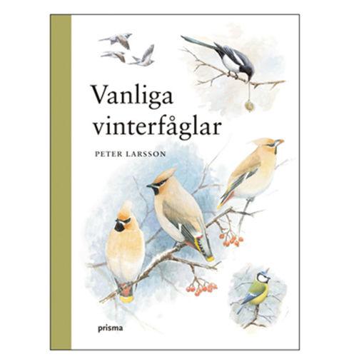 Bild på Vanliga vinterfåglar /Larsson