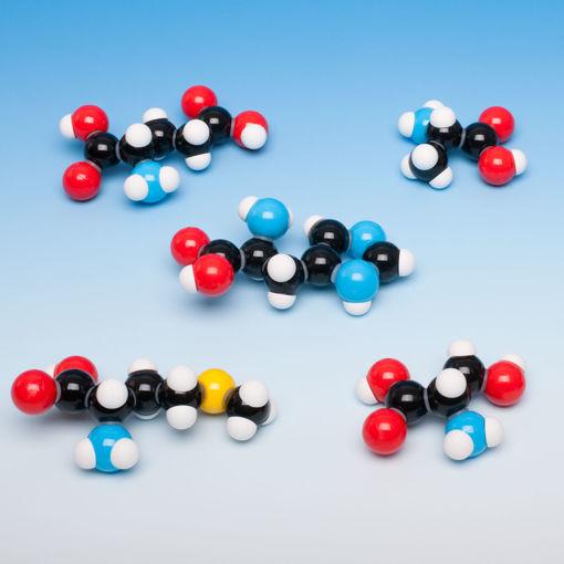 Bild på Molekylm. amino syra, 7 modeller