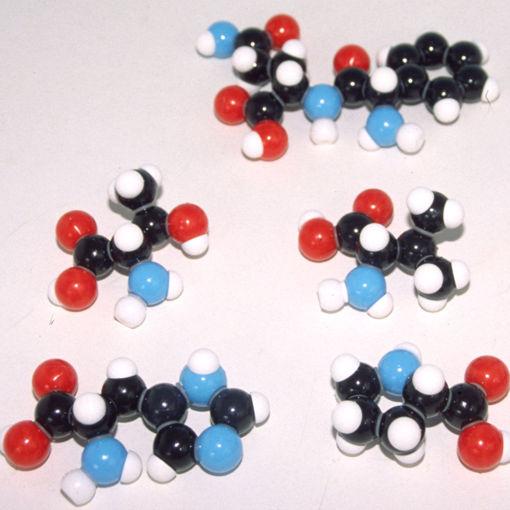 Bild på Molekylm. amino syra, Peptidtillsats