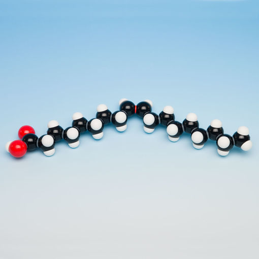 Bild på Molekylm. fett omättat, 1 molekyl