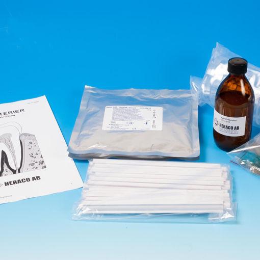 Bild på Tandbakterie anaerob bakterieodling