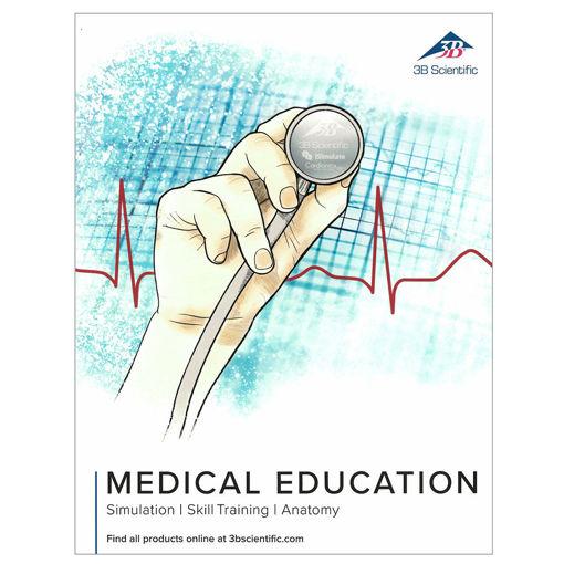Bild på Anatomikatalogen 3B medical
